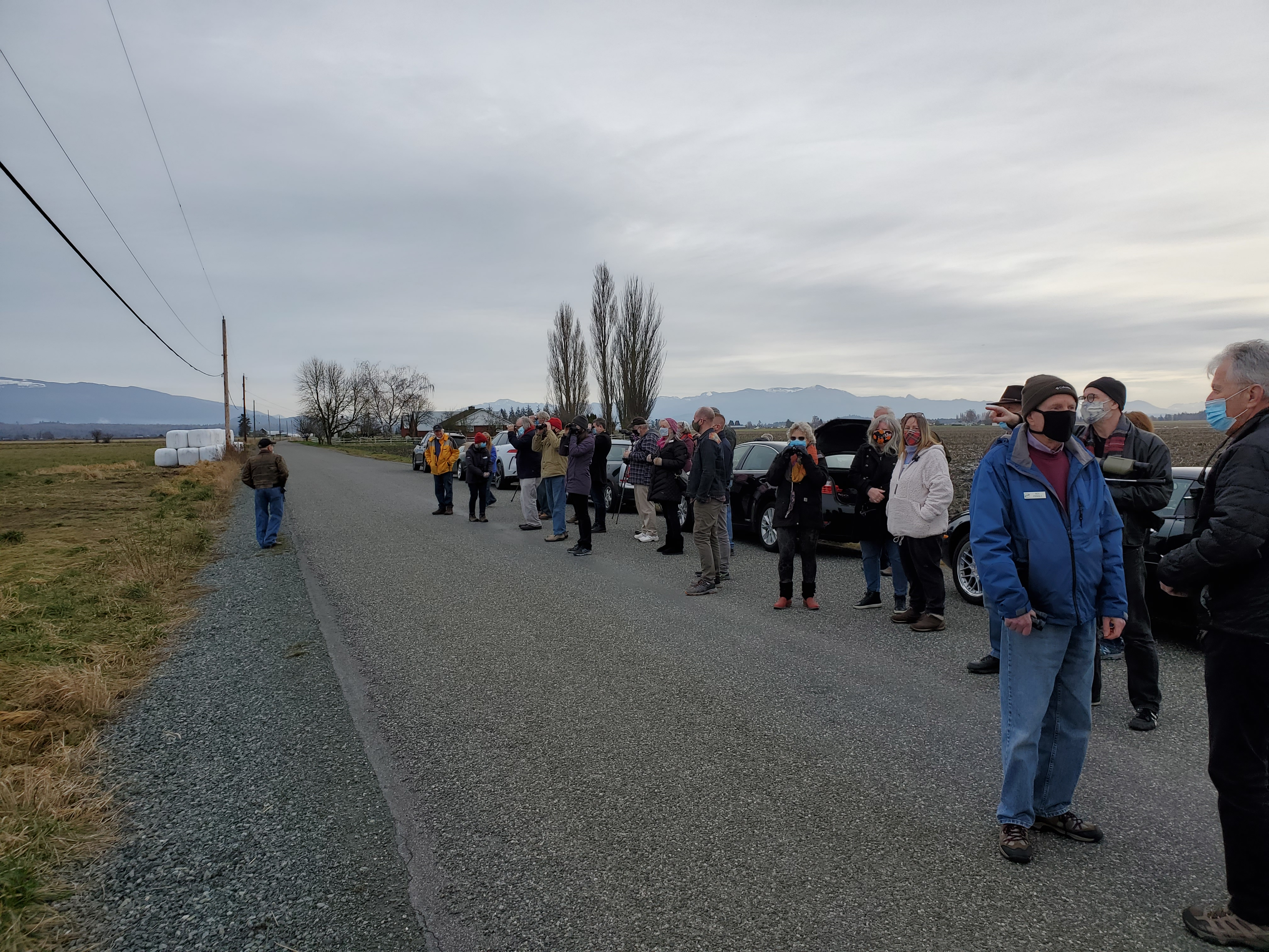 club members gathered along road to watch the raptors